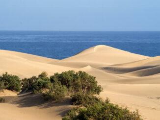 Visitar Maspalomas Gran Canarias